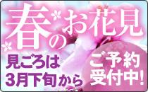 春のお花見/桃の花